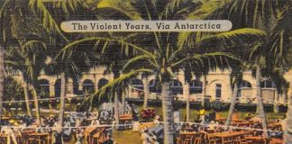 THE VIOLENT YEARS _ Cover
