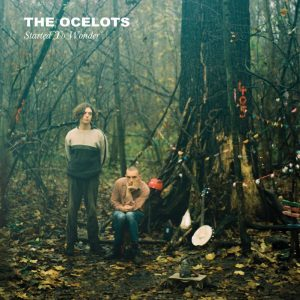 The Ocelots - Started To Wonder